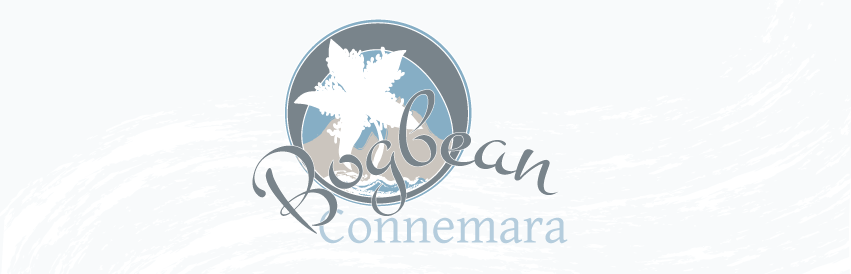 The Bogbean Cafe, Guesthouse, Roundstone Outdoors, Connemara